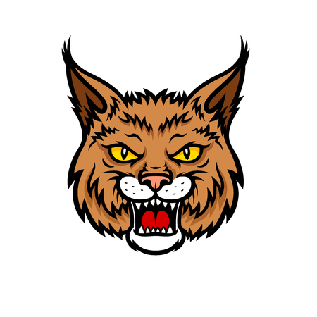 lynx: Bobcat lynx head muzzle vector mascot icon