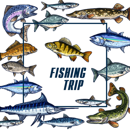 crucian: Vector poster template for fishing trip sketch Illustration