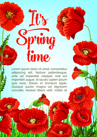 Vector poster of spring tiem poppy flowers