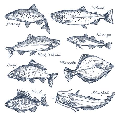 Croquis de poissons de mer vecteur icônes isolées