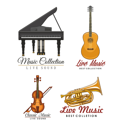 Vector Icons set for music concert labels Illustration