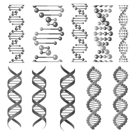 Vector symbols of dna helix or molecular chain