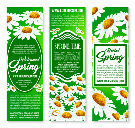Hello Spring floral banner set with daisy flowers