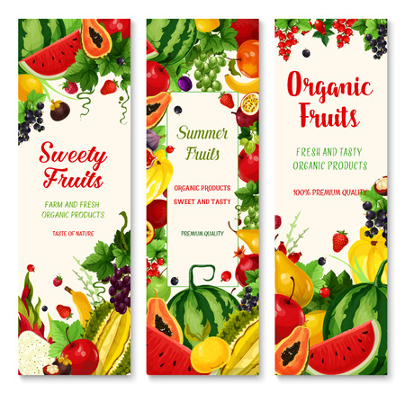 Summer fruit and berry banner set for food design