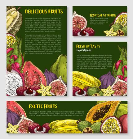 exotic fruit: Exotic tropical fruit banner, poster template set Illustration