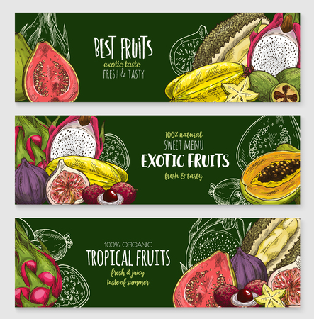 Exotic tropical fruit blackboard banner set