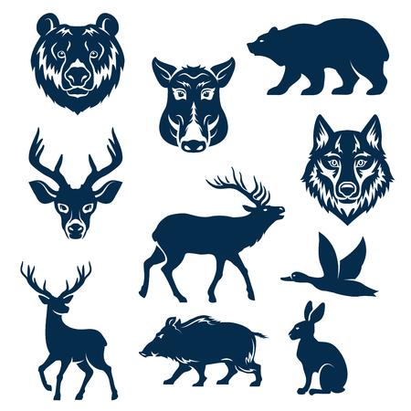 야생 동물과 사냥을위한 조류의 벡터 아이콘 스톡 콘텐츠 - 77600661
