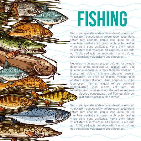 A Vector poster for fishing or sea fish product