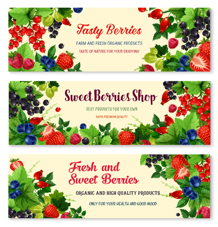 Vector banners of fresh berries for berry shop Ilustração