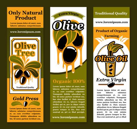 オリーブとオリーブ オイル製品のベクトル バナー  イラスト・ベクター素材