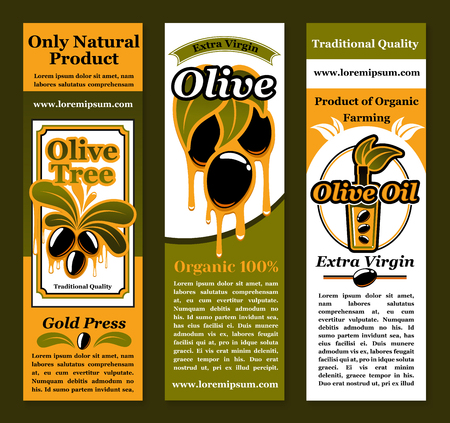 Vector banners for olives and olive oil product