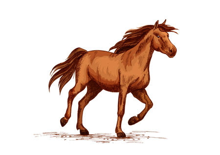 Horse racer or equine races vector sketch symbol Çizim