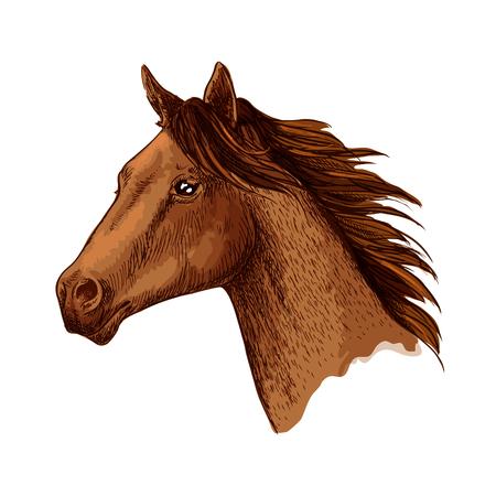 Paardtrotter hoofd vector schets symbool Stock Illustratie