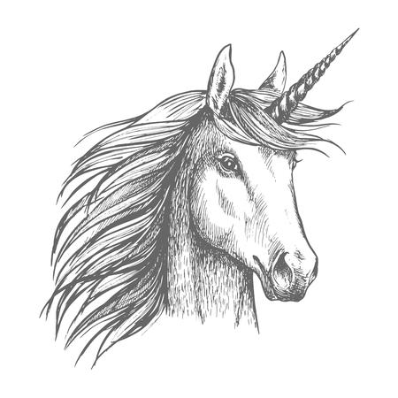 Schizzo di cavallo Unicorno con corno Archivio Fotografico - 78078390