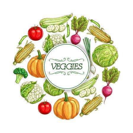 Vegetables sketch poster for food label design Banco de Imagens - 78078392