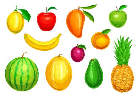 熱帯および庭の果物水彩セット  イラスト・ベクター素材
