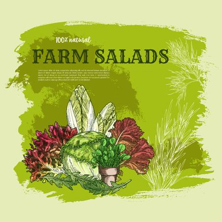 サラダの葉や緑の野菜をスケッチ ポスター