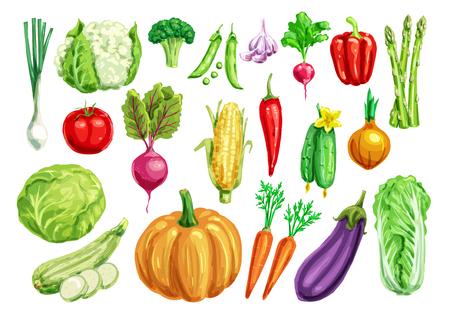 健康食品デザインのセット野菜の水彩画