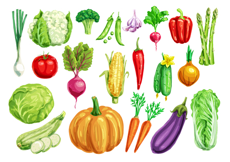 Plantaardige waterverf die voor gezond voedselontwerp wordt geplaatst Stock Illustratie