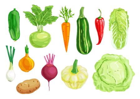 Organic vegetable watercolor illustration set Illustration