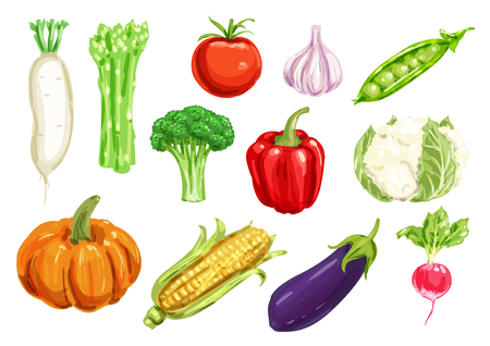 Fresh vegetable watercolor drawing set