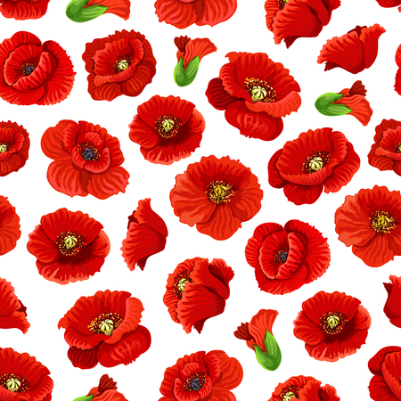 Flower of poppy floral seamless pattern background