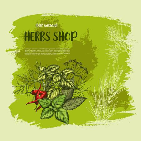 スパイスとハーブの店のためのベクトル ポスター  イラスト・ベクター素材