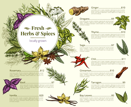 Vector menu price for spices and herbs shop Ilustrace