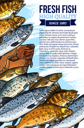 Fishing poster for fresh fish food market design. Vector seafood and fish catch of fisherman salmon, herring and sheatfish or tuna, trout, pike and carp or flounder for sea food shop or restaurant Illustration