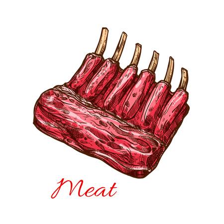 고기 갈비 스케치. 돼지 갈비, 양고기 또는 쇠고기 들어온다의 고기 잘라 바베큐 파티, 그릴 바 또는 스테이크 하우스 메뉴, 정육점 디자인을위한 고립  일러스트