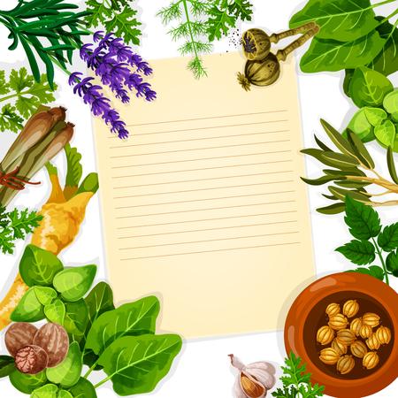 Recept papieren kaart met kruiden, kruiden en bladgroente. Basiliek, munt, rozemarijn, knoflook, peterselie, dille, selderij, nootmuskaat, kardemom, citroengras, sorrel, papaverzaad, lavendelbloem poster met kopie ruimte