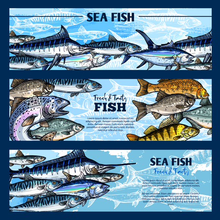 Fresh fish seafood restaurant sketch banner set. Salmon, tuna, blue marlin, mackerel, perch, trout, pike, carp and cod fish. Sea and freshwater animal for seafood menu, fish market and fishing design Ilustrace