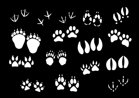 Track imprints of wild animal paws or hooves and birds feet. Foot traces of dog or car pet, sparrow or dove, wolf and fox or farm cow and horse hoof, bear or panther claw. Vector isolated icons set Illustration
