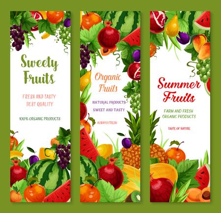 과일 벡터 배너 팜 신선한 수 박, 달콤한 복숭아 또는 사과 살구, 열 대 파인애플, 바나나, 수 분이 많은 석류 및 포도와 멜론 또는 오렌지와 여름 정원