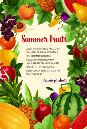 夏の新鮮なリンゴとザクロ、アプリコットとトロピカル パイナップルやバナナ、ジューシーなスイカ、甘い桃、緑のブドウやメロン、梨と夏庭の梅の果実ベクトル ポスター 写真素材 - 79001670
