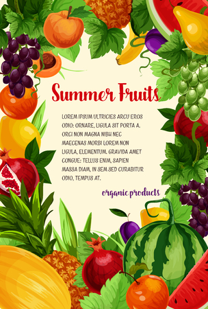 Fruits vector poster of summer fresh apple and pomegranate, apricot and tropical pineapple or banana, juicy watermelon, sweet peach and summer garden plums with green grapes and melon or pear