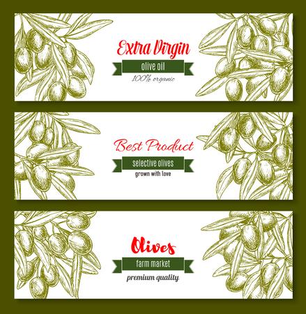 Vector banners for extra virgin olive oil product Ilustração