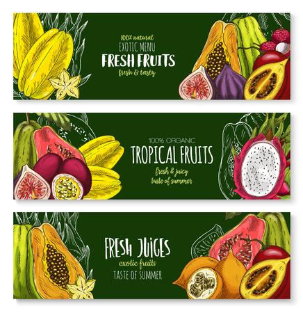 ベクトル エキゾチックなフルーツ ジュース バーに設定バナー  イラスト・ベクター素材