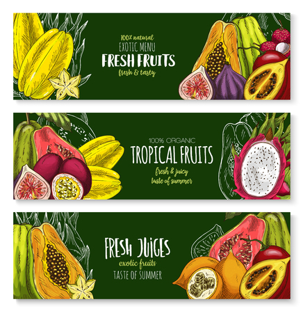 Vector exotic fruits banners set for juice bar