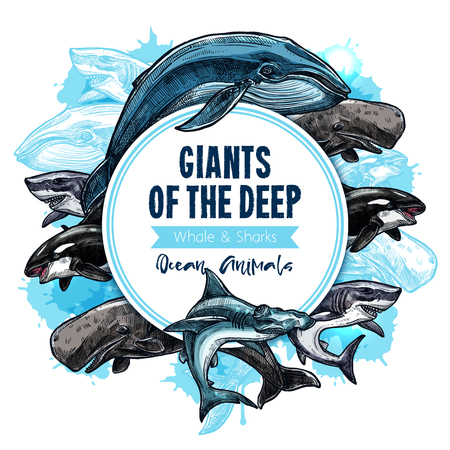 海の動物たちやシャチやシャチ、マッコウクジラ カシャロと白鮫またはハンマー ヘッドの深層水ジャイアンツ ポスター。