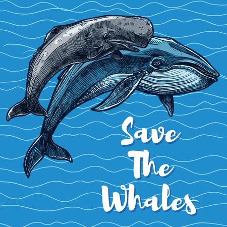 Save whales poster for sea animal saving concept.