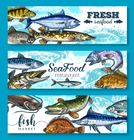 pike: Fresh seafood or fish banners for fresh sea food market or restaurant. Illustration