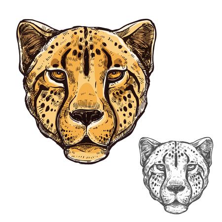 Cheetah muzzle African wild animal vector icon Illustration