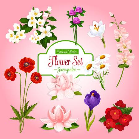 봄 정원 꽃의 벡터 포스터 설정