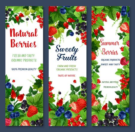 ベリーや甘い果物ベクター バナー セット
