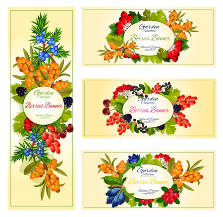 A Vector wild berries and fruits banners set.