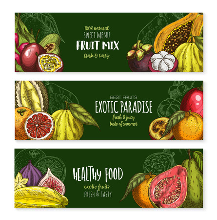 Fruits banners of exotic figs, passion fruit or guava and feijoa or carambola star fruit for menu. Vector mix of exotic durian, papaya or dragon fruit pithaya and tropical lychee or rambutan Illustration