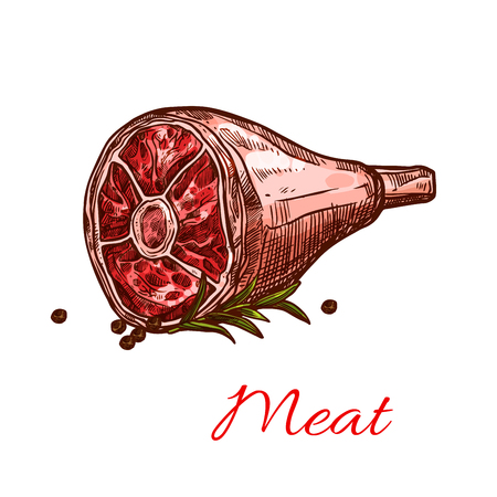 Hind quarter ham raw meat sketch icon. Vector raw beef or port leg meat loin on bone or tenderloin steak and lamb gammon for butchery shop and framer meat product or restaurant design