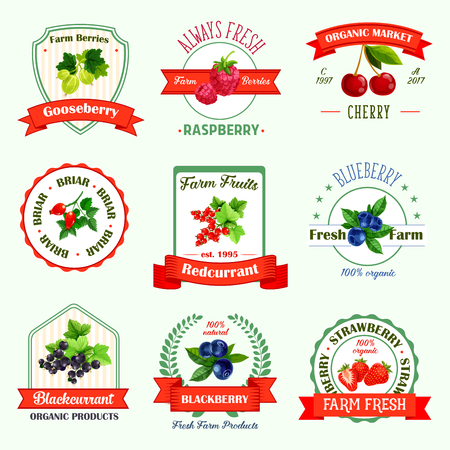 Berries icons or berry jam or juice product labels. Vector isolated set of organic gooseberry, raspberry, cherry or fresh farm briar, redcurrant or blueberry, black currant, blackberry and strawberry Illusztráció