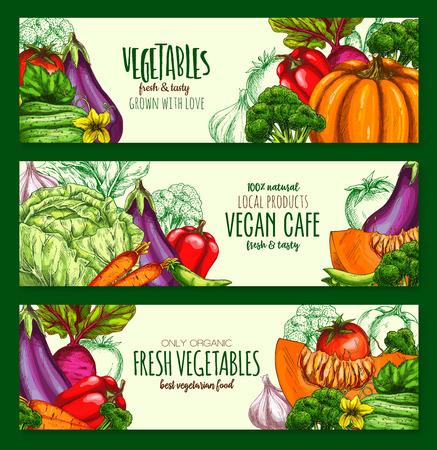 Vegetables harvest vegan cafe vector banners set Illustration